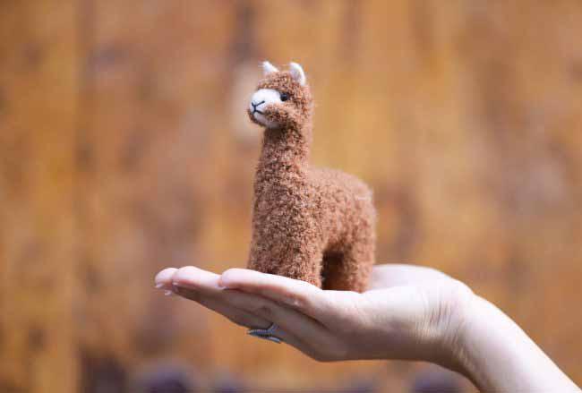 Needle Felting Alpaca